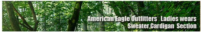 アメリカンイーグル/Amrican Eagle/レディース/セーター、カーディガンコーナー