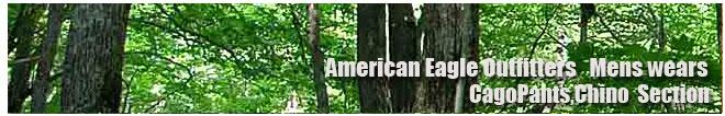アメリカンイーグル/Amrican Eagle/メンズ/カーゴ、チノパンコーナー