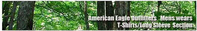 アメリカンイーグル/Amrican Eagle/メンズ/Tシャツ、ロンTコーナー